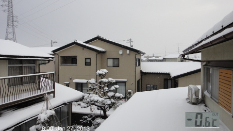 SnowingScene 130127-0800.jpg