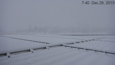 SnowingScene 131228-0740.jpg