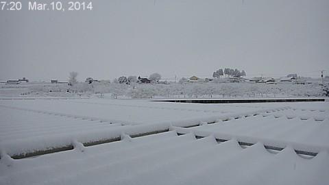 SnowingScene 140310-0720.jpg