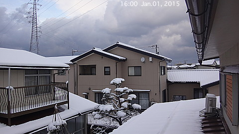 SnowingScene 150101-1600.jpg