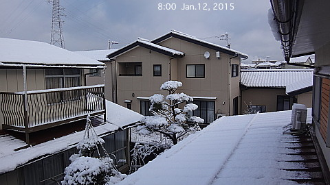SnowingScene 150112-0800.jpg