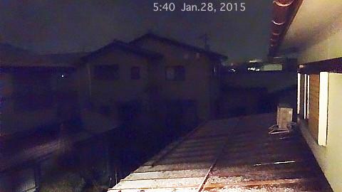 SnowingScene 150128-0540.jpg