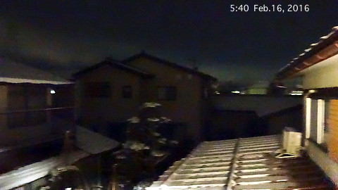 SnowingScene 160216-0540.jpg