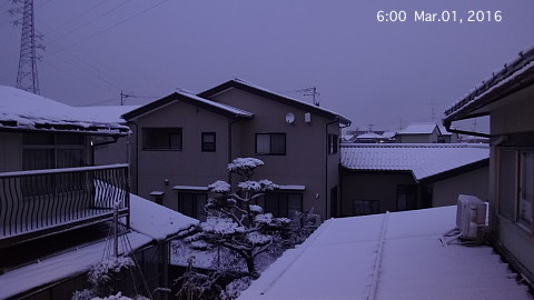 SnowingScene 160301-0600.jpg