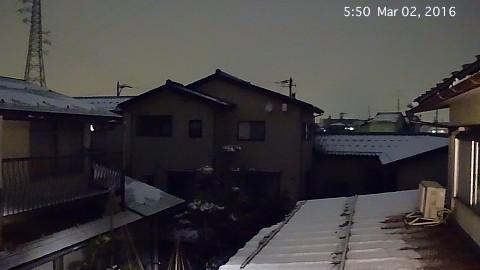 SnowingScene 160302-0550.jpg