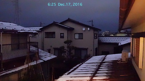 SnowingScene 161217-0625.jpg