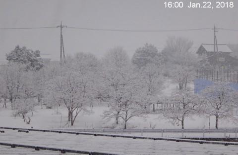 SnowingScene 180122-1600.jpg