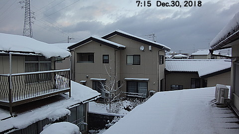 SnowingScene 181230-0715.jpg