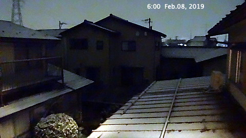 SnowingScene 190208-0600.jpg