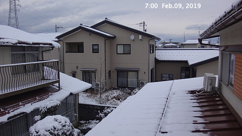 SnowingScene 190209-0700.jpg