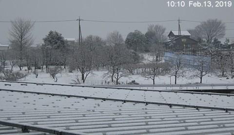 SnowingScene 190213-1010.jpg
